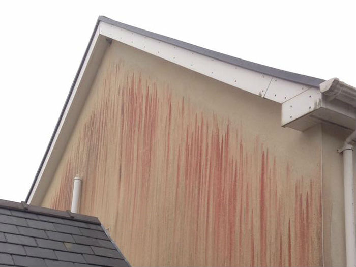 Render Cleaning Softwashing Thatcham